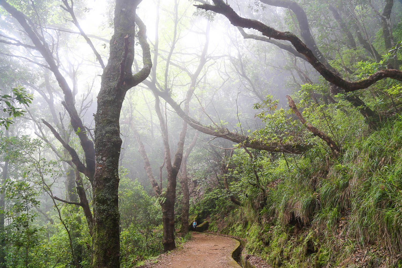 Madeiran parhaat vaellusreitit: https://walleni.us/